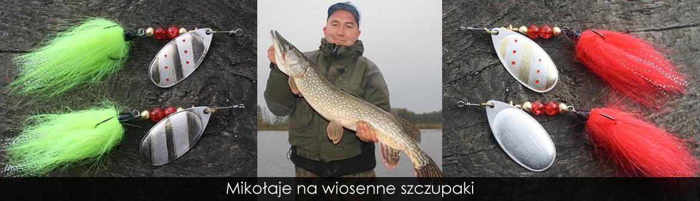 riomes.pl